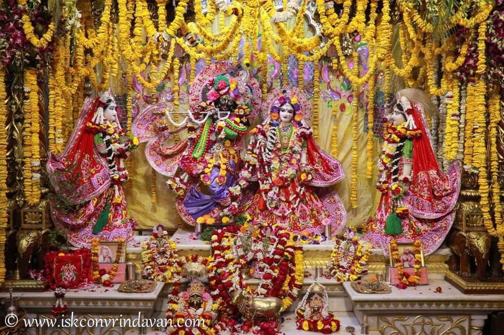 ISKCON Vrindavan Sringar Deity Darshan 29 Feb 2016 (3)