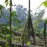 Déforestation près de Tunda Loma Lodge à Calderon (San Lorenzo, Esmeraldas), 27 novembre 2013. Photo : J.-M. Gayman