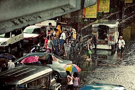 Sheltering under Bridge