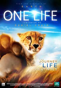 Cuộc Sống Của Thiên Nhiên - One Life poster