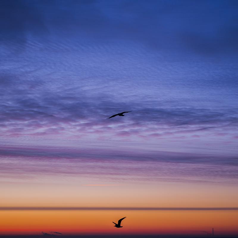 Last sunrise 2014 (5).png
