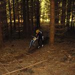blandet 2008 Marts 054.jpg