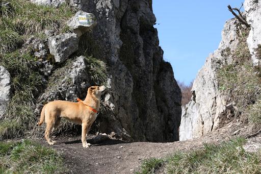 Horolezkyňa