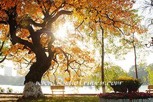 Hà Nội có mùa thu
