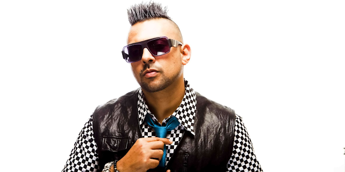 Sean Paul  Net Worth, Income, Salary, Earnings, Biography, How much money make?
