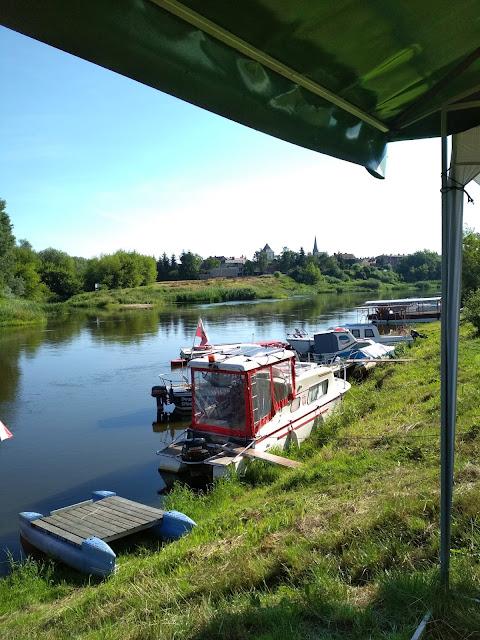 Cumowisko w centrum miasta na Warcie. Z widokiem na ujście Wełny czyli rezerwat ichtiologiczny.