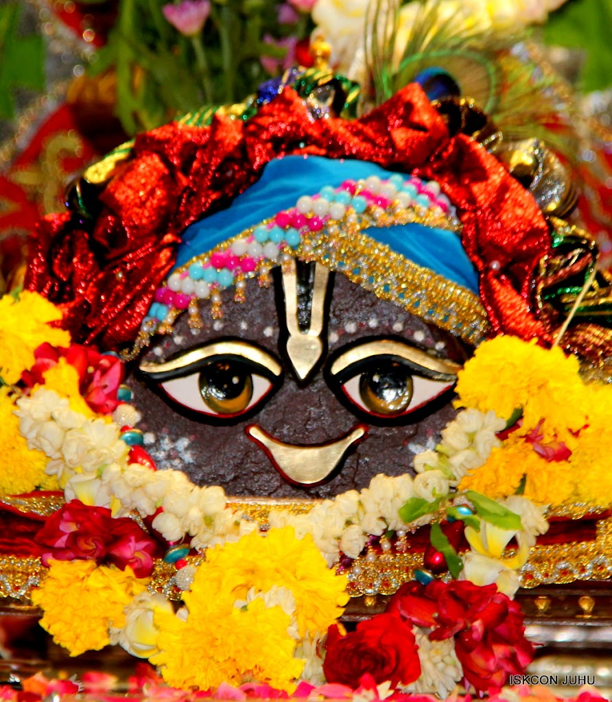 ISKCON Juhu Sringar Deity Darshan on 3rd May 2016 (10)