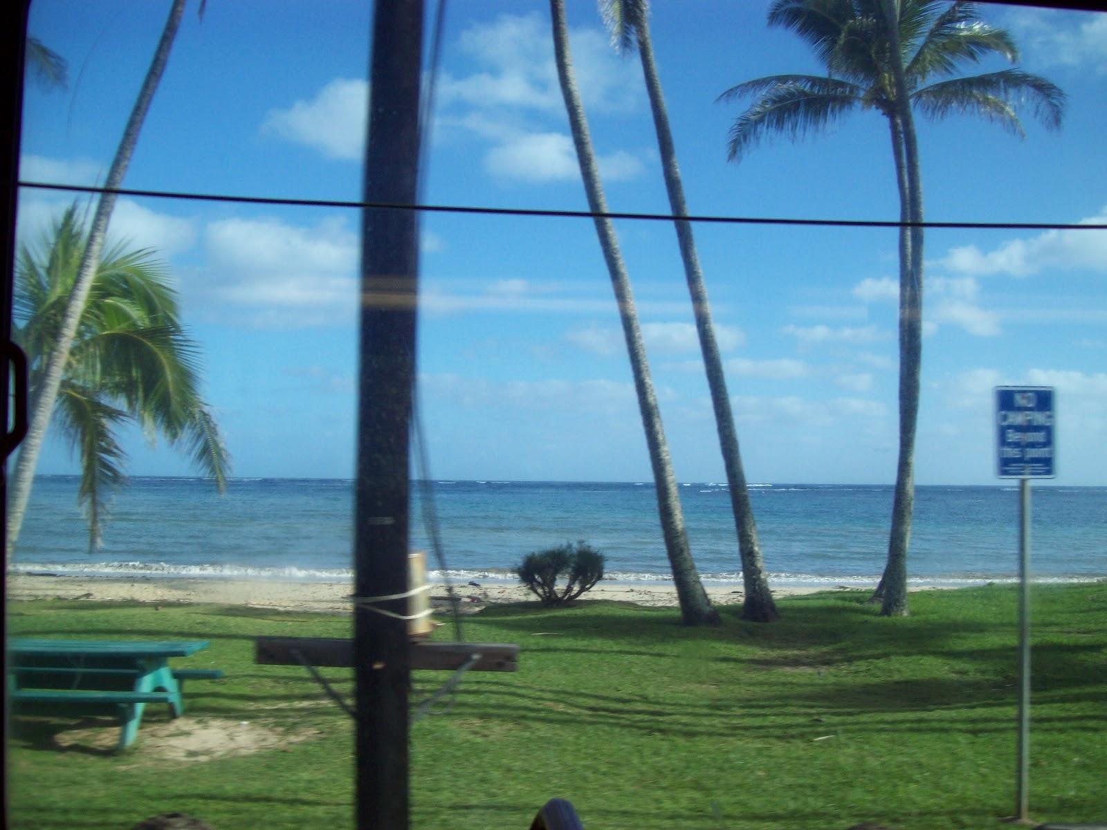 Hawaii Day 3 - 100_6909.JPG