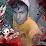 elizeu paixao.'s profile photo