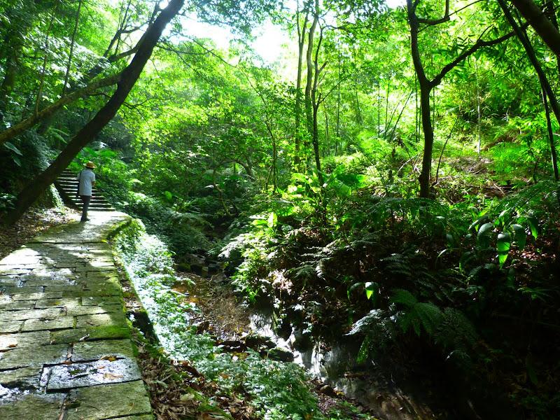 Taipei. Si Shou shan, en plein coeur de Taipei. Accès par un autre chemin moins emprunté. - P1240885.JPG