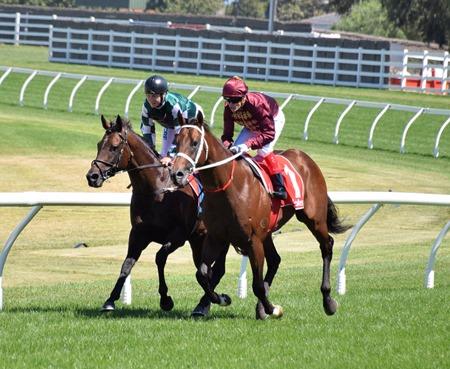 race 5_zousain_yulong janaury 1