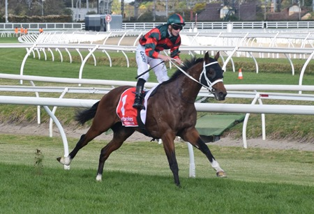 caulfield guineas_finish 8
