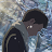 Jeffrey Cao avatar image
