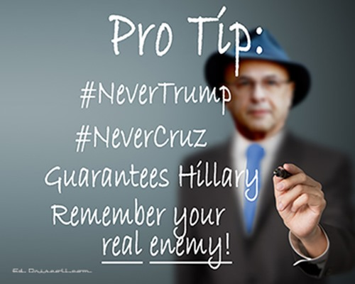 roger_never_trump_never_cruz_article_grid_4-19-16-1