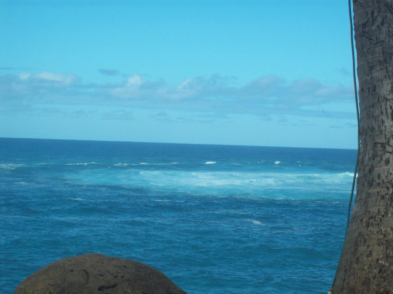 Hawaii Day 8 - 114_2188.JPG