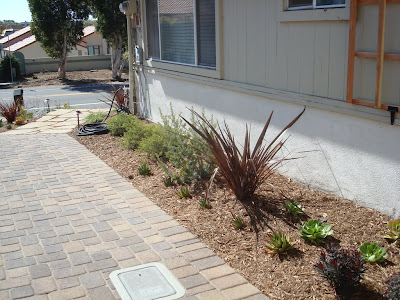 We installed interlocking pavers which are attractive, don't crack and allow water to infiltrate, reducing storm runoff and water pollution.