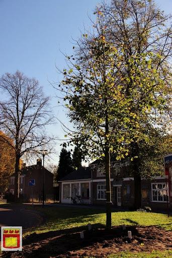 burgemeester plant lindeboom in overloon 27-10-2012 (31).JPG