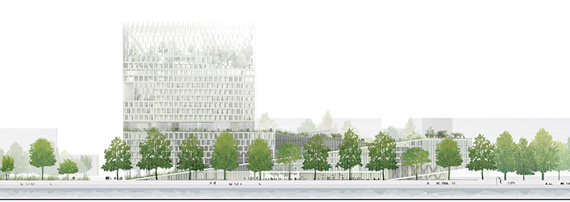 15-D5-CT-ELEVATION-QUAI.jpg (800×284)