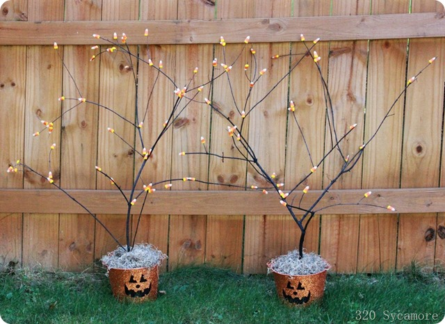 candy corn branches