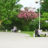 Képek az iskoláról - image014.jpg