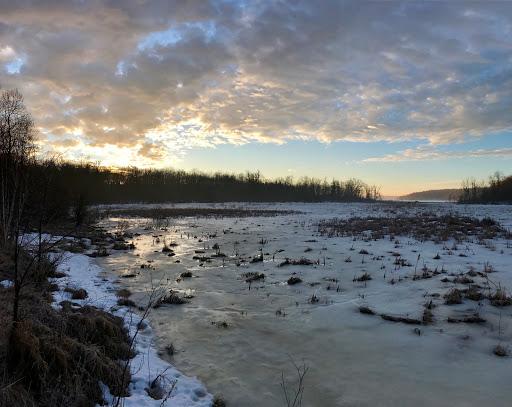 Marsh area on return to twin lakes at sunrise.