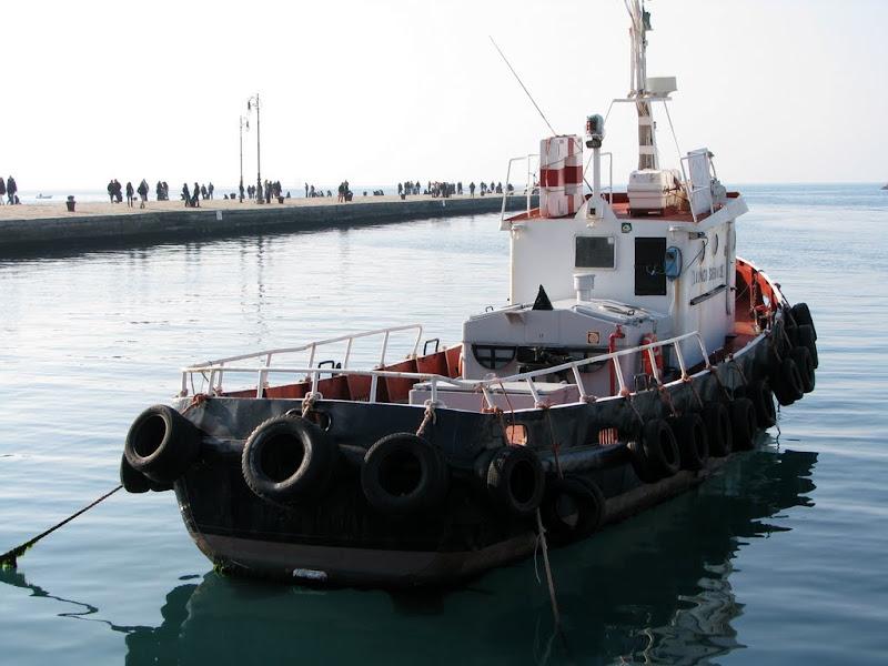 IMG_9116 - Trieste (Italy)
