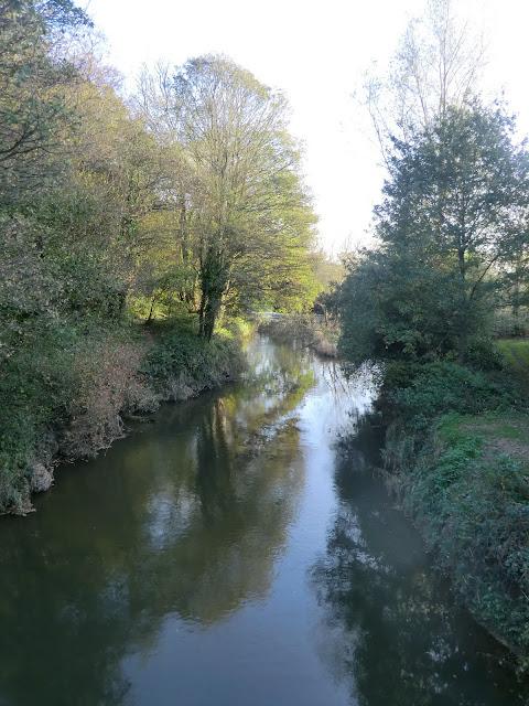 CIMG5314 River Medway at Ashurst