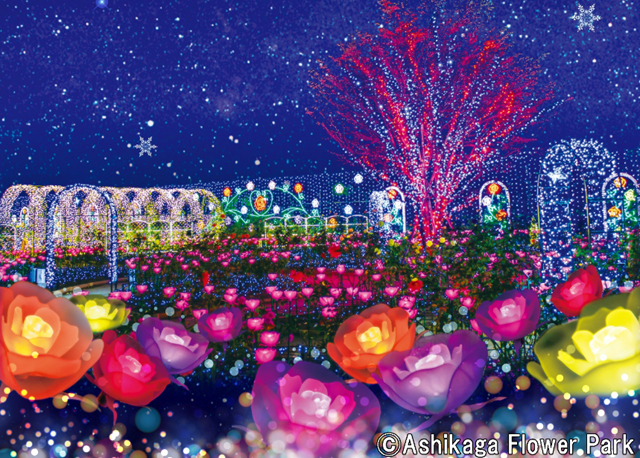Illuminate Your Holidays in Japan This Winter! 3