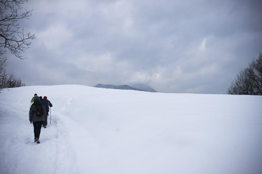 Winter Lubnik - Vika-0596.jpg