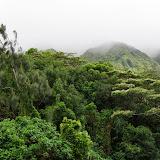 06-18-13 Waikiki, Coconut Island, Kaneohe Bay - IMGP6951.JPG