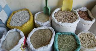 Algérie:La production des légumes secs n'a pas dépassé les 1.579 quintaux dans la wilaya d'Oum El Bouaghi