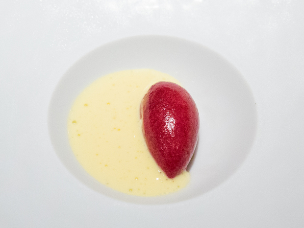 photo of Sauvignon sorbet