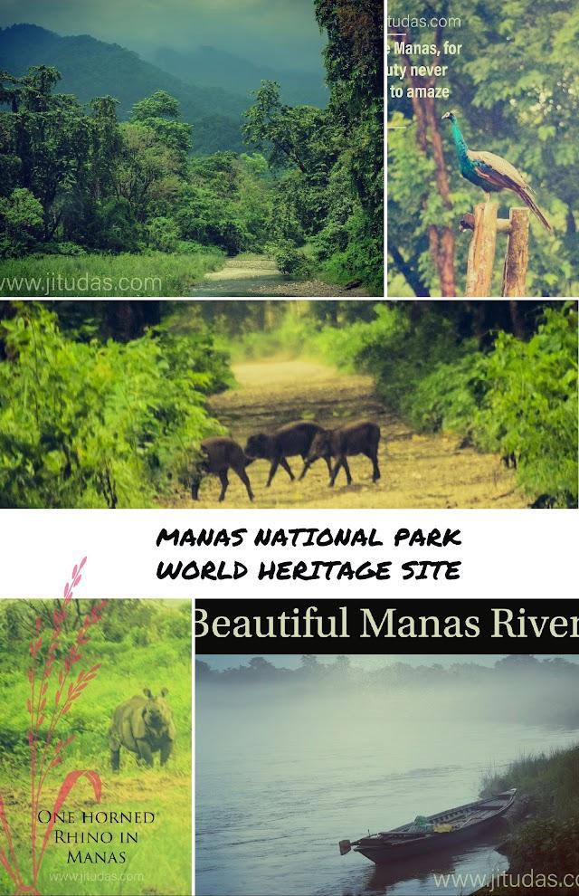 Visit Manas National Park , World heritage site of Assam, India