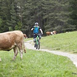 Hofer Alpl Tour 17.05.16-6742.jpg