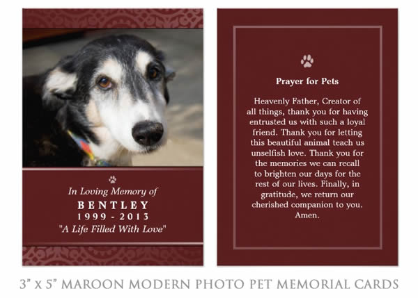 Pet Memorial Card - Photo