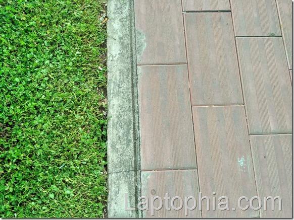 Hasil Foto Kamera Xiaomi Redmi 3X