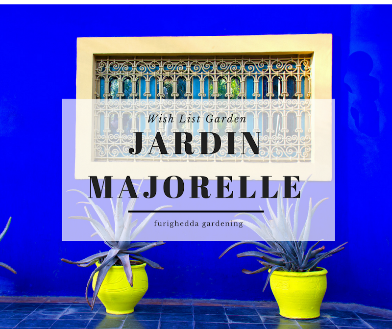 Wish list Majorelle (1)