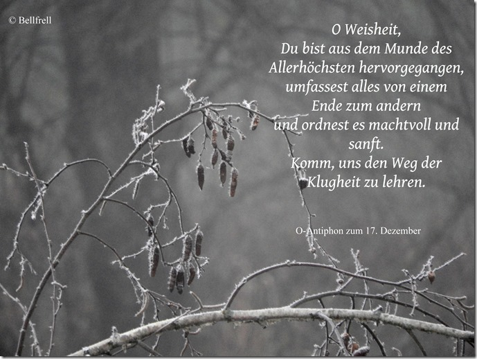 O Antiphon O Weisheit 17. Dezember