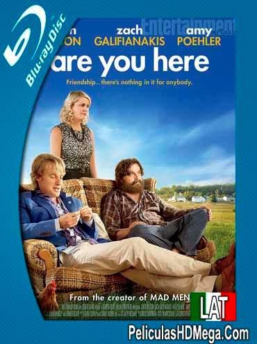 Estas Aqui (Are You Here) (2013) BRRip 720p Español Latino