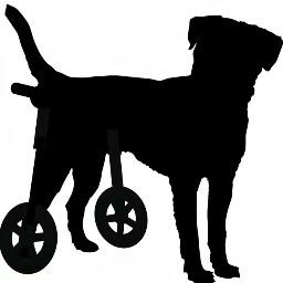 Toni Ramon (Ortopedia Canina)