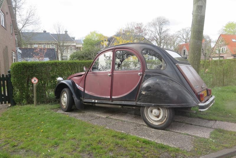 Weekend Noord Holland 2016 - IMG_6696_800x534.JPG