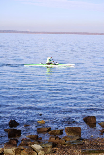 A Kayaker passing the shore of Boulevard Park / Credit: Bellingham Whatcom County Tourism