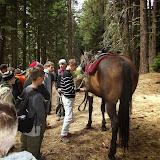 Camp Baldwin 2014 - DSCF3637.JPG