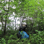 Уборка мусора у 500 летнего Дуба 006.jpg