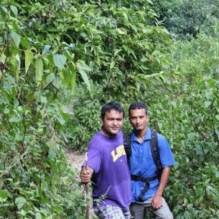Amod Thapa