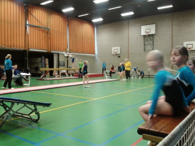 Gymnastiekcompetitie Denekamp 2014 - IMG-20140208-WA0016.jpg