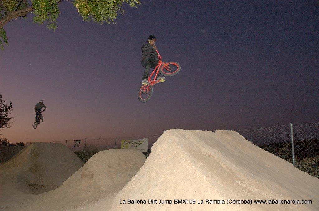Ballena Dirt Jump BMX 2009 - BMX_09_0171.jpg