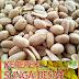 Kacang Shandong Masin