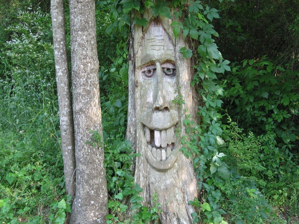 orr-park-tree-carvings-2