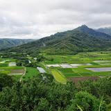06-26-13 National Tropical Botantial Gardens - IMGP9432.JPG